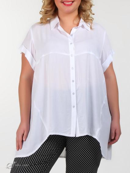 60b5243483e Купить белую блузку большого размера в интернет-магазине